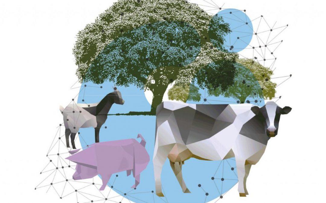 IV Jornadas CICAP sobre innovación agroalimentaria – Innovar para crecer